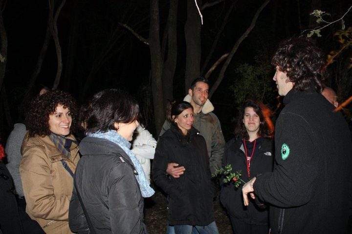 notte bosco